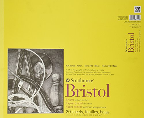 strathmore-bristol-carta-14-x-17-100lb-20-fogli-di-pergamena