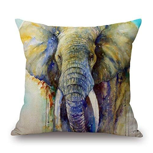 Nacasu Artistdecor 18 X 18 inches / 45 by 45 cm Slimmingpiggy Comfortable Bedding Holy Elephant 18x18 inch Pillow Case Pillow Shams,Both Sides is Fit for Kids,her,Dining Room,Gril Friend,Teens Girls (Grils Teen Hot)