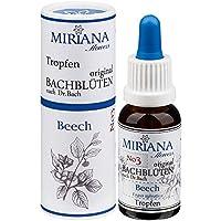 MirianaFlowers Beech 20ml Bachblüten Stockbottle preisvergleich bei billige-tabletten.eu