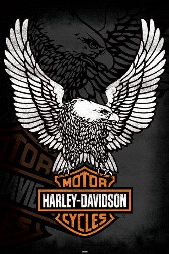 harley-davidson-eagle-maxi-poster
