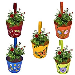 CINAGRO - Set of 5 - Designer Hand Painted Railing Metal Planter, Plant Holder, Balcony, Home Garden - (Maroon, Orange, Blue, Yellow, Lemon)