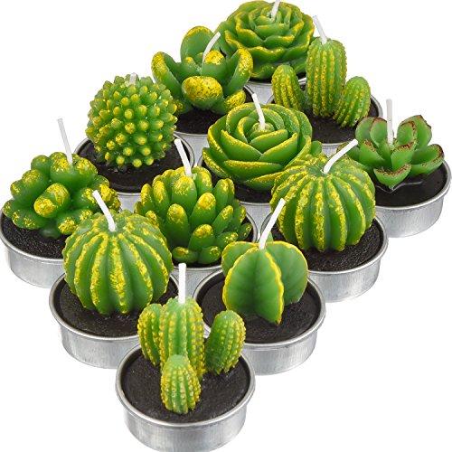 12 Pezzi Candela di Cactus Fatto a Mano Tealight Delicato Cactus Succulente per Festa Matrimonio Spa Casa Decorazione Regali