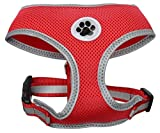 Best Four Paws Dog Harness For Cars - Red Mesh Soft Dog Harness No Pull Summer Review