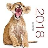 Calendrier de table 2018 - Bébés animaux