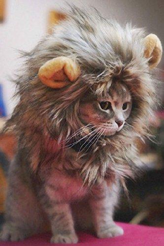 Descripciones:  ¡Este sombrero de mascota peludo y hecho a mano convierte a tu gato o perro pequeño en un león, el rey de los animales!Se adapta a la mayoría de los gatos y perros pequeños de tamaño promedio.  traje tan genial diseñado para sus masc...