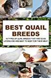 Best Quail Breeds: 10 Types Of Quail Breeds That Are Good Layers And Are Best To Keep For Their Meat