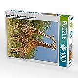 Love is in the air - Zwei Giraffen beim Liebesspiel 1000 Teile Puzzle hoch