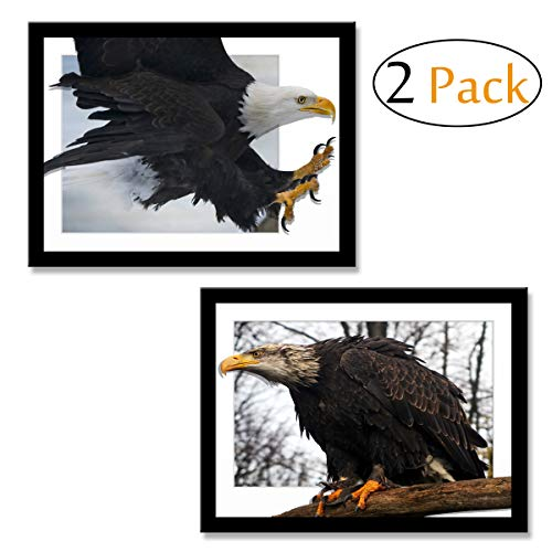 CUFUN Art 3D Stereoskopische Wirkung Illusion Silent Weißkopfseeadler und Flying Bald Eagle Fotos Poster Drucke Kunst auf Leinwand Wanddekoration 12 × 16inx2pcs Weihnachten Ferienhaus Geschenk