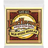 Ernie Ball Earthwood Silk & Steel - Cordes pour guitare acoustique en bronze 80/20 - calibre 13-56