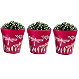 Pentole, set di 3 vasi erboristici colorati rosa per uso interno/esterno.