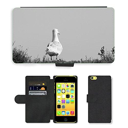 Just Mobile pour Hot Style Téléphone portable étui portefeuille en cuir PU avec fente pour carte//m00139338Goéland l'eau plage de Côte d'Oiseaux de Mer//Apple iPhone 5C