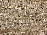 Wohnrausch Travertin Toronto Wandverkleidunghell- bis dunkelbraun, 11 Stück, WTORON