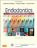 Best Saunders Practice Livres - Endodontics: Principles and Practice, 5e by Mahmoud Torabinejad Review