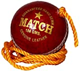 #5: Priya Sports Leather Practice Cricket ball Red