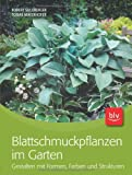 Blattschmuckpflanzen im Garten: Gestalten mit Formen, Farben und Strukturen