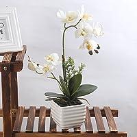 LianLe Artificial Orquídea Mariposa Flor Planta de Imitación Decoración del Hogar Boda Fiesta,blanco