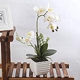 LianLe Orchidea Phalaenopsis Fiori artificiali con vasi in ceramica per Decorazione