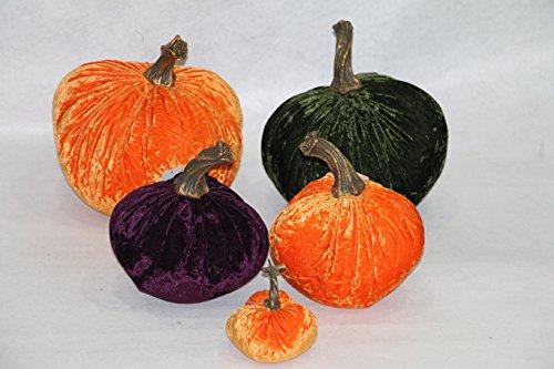 RG Style 5Stück Luscious Faltig Samt Set aufblasbar Kürbis (5), Orange + Aubergine +, Kohl ()