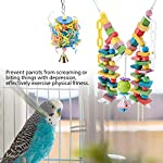 fdit wooden parrot toys colorful wood birds standing chewing climbing swing stairs ball toys gift 2pcs Fdit Wooden Parrot Toys Colorful Wood Birds Standing Chewing Climbing Swing Stairs Ball Toys Gift 2Pcs 51IjybOsPQL