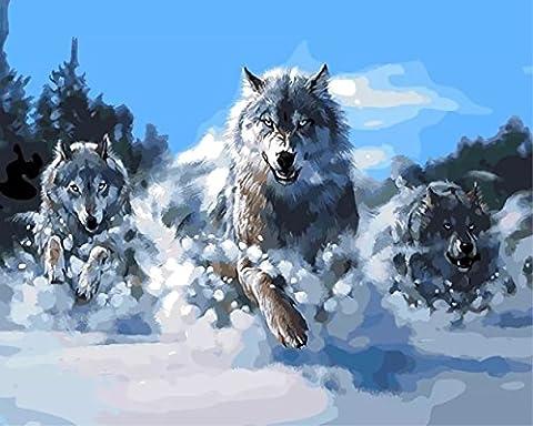 Obella Peinture par numéros Kits issu de la gamme Snow Loup 50x 40cm issu de la gamme Peinture par numéros numériques, peinture à l'huile, sans cadre