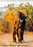 Brunos Bilder: Süd-Luangwa (Wandkalender 2019 DIN A4 hoch): Außergewöhnliche Fotos aus einem wildreichen Nationalpark in Sambia. (Monatskalender, 14 Seiten ) (CALVENDO Tiere) - Bruno Pohl