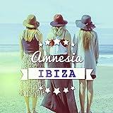 Amnesia Ibiza - Dreaming in Paradise, Born to Chill, Party Night, One Night in Ibiza