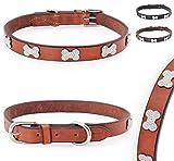 Pear - Tannery Luxury-Line Hundehalsband aus weichem Vollrindleder, Versehen mit Einer Knochen-Kristall-Verzierung mittig, S 34-44cm, Cognac