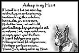 Bull Terrier pet dog memorial magnetic sympathy card gift - Asleep in my Heart