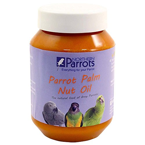 parrot-palm-fruit-nut-oil-nutritious-natural-treat-for-african-greys-other-parrots