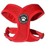 Softgeschirr Hundegeschirr Brustgeschirr XCross weich gepolstert verstellbar für kleine Hunde bis Mops rot Mesh NEU! S - L (M: ( Brustumfang 40 - 51 cm ))