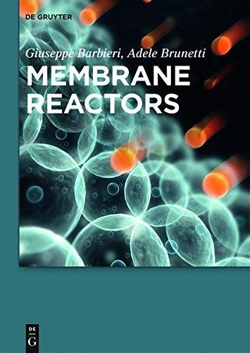 Membrane Reactors (English Edition)