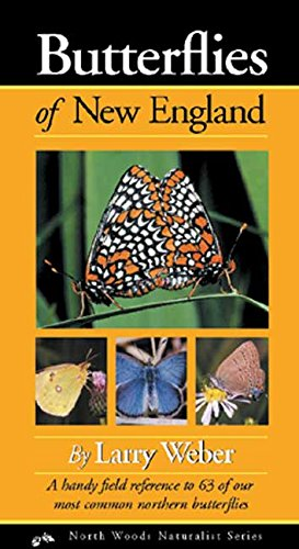 Butterflies of New England (Naturalist Series)