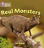 Real Monsters: Band 03/Yellow (Collins Big Cat Phonics)
