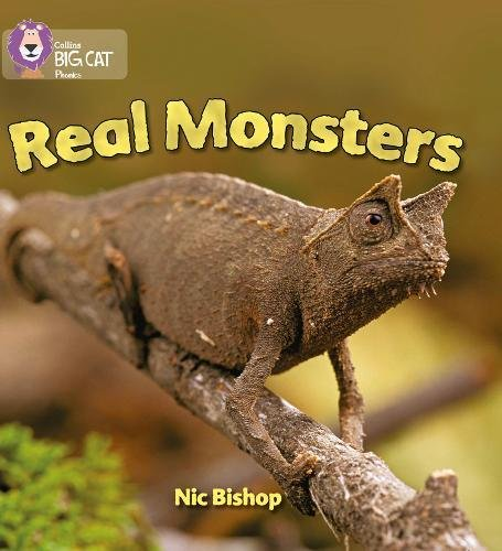 Real Monsters: Band 03/Yellow (Collins Big Cat Phonics): Yellow/Band 3
