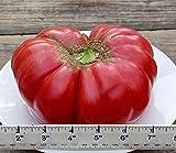 """AGROBITS 30 semi di pomodoro """"Napa Giganti†-Molto grandi, rosa, dolci. Combinato S/H"""