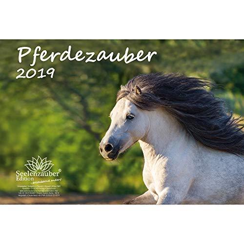Pferdezauber · DIN A4 · Premium Kalender 2019 · Pferde · Reiten · Fohlen · Hengst · Stute · Edition Seelenzauber