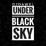 Under Black Sky