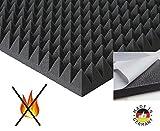 Pyramiden Schaumstoff SELBSTKLEBEND FOLIE Dämmung Schallschutz Flammhemen- MVSS302 akustik Selbstklebend, (ca 100x50x5cm)