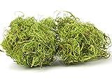 NaDeco Curly Moos grün 500g | Curlymoos | Tillandsia Moos | Deko Moos | Bastelmoos | Dekomoos | Bastel Moos | Moos zum Basteln