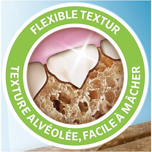 Purina DentaLife Medium Tägliche Zahnpflege-Snacks für mittelgroße Hunde, 5er Pack (5 x 115 g) - 6