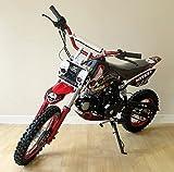 Pit Bike 125CC 14/12 SKULL / Dirt Bike con motore a 4 tempi e avviamento elettrico. Mini cross bike per adulti o bambini di età avanzata. ..