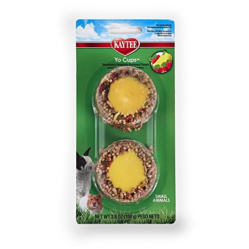KAYTEE Fiesta Joghurt Cup Strawberry Banana nach Honig für kleine Tiere behandeln, 3.8-oz (Behandelt Pellet)
