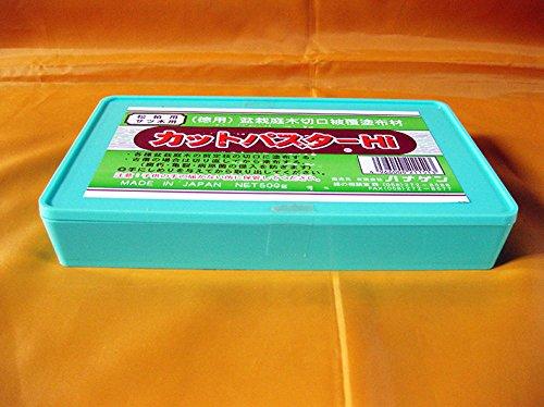 mastice-giapponese-pasta-cicatrizzante-specifico-per-bonsai-di-conifere-500-gr
