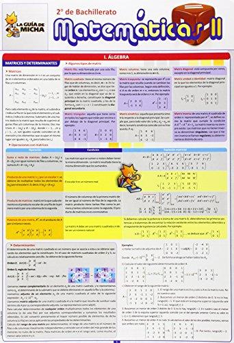 La Guía de Micha: Matemáticas II, 2º de Bachillerato (Guia De Micha) - 9788493664046