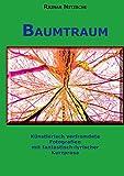 Baumtraum: Künstlerisch verfremdete Fotografien mit fantastisch-lyrischer Kurzprosa. Stadt-Wald-Bäume und Farne.