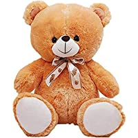 HUG 'n' FEEL SOFT TOYS Long Soft Lovable hugable Cute Giant Life Size Teddy Bear (2 Feet, Brown)