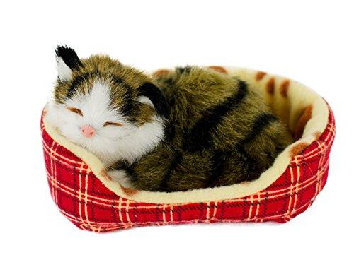 Katze im Körbchen, 14 cm, braun getigert, mit Stimme, Plüschtier, Plüschkatze