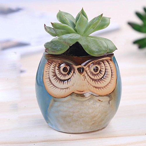 Kicode Plantes Pots de fleurs Hibou Petite céramique Bonsaï succulent Pour la fenêtre Jardin Décor de bureau