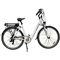 e-Ranger's Cruiser Specification Electric Bike