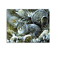 WYTCY picture on wall acrylic paint by numbers diy painting by numbers coloring by numbers squirrel snow pine With Framed 40x50cm